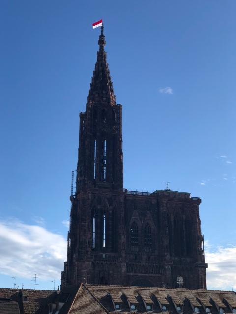 Cathédrale de Strasbourg le 11/11/2018